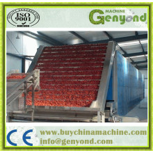 Full Automaitc Onion Drying Machine